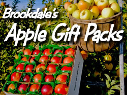 Send Brookdale's Tasty Apples